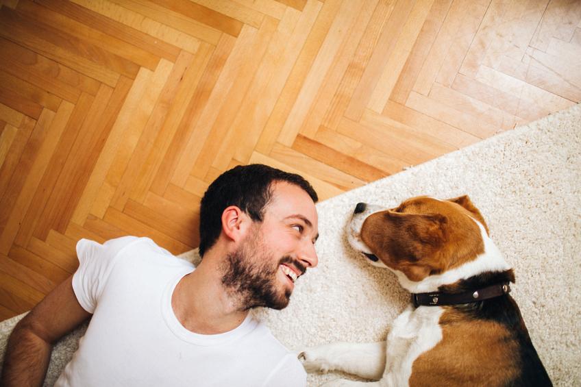 Vilken är hund är rätt för mig?